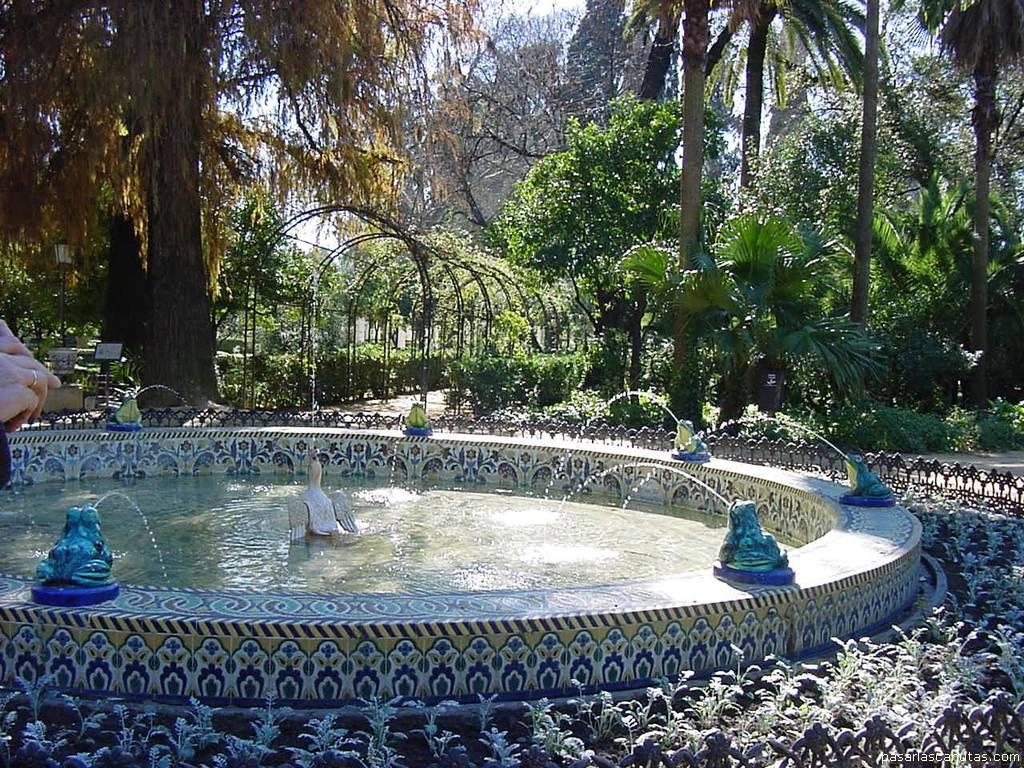 http://www.pasarlascanutas.com/Sevilla/SEVILLA%20-%20FUENTE%20DE%20LAS%20RANAS.JPG