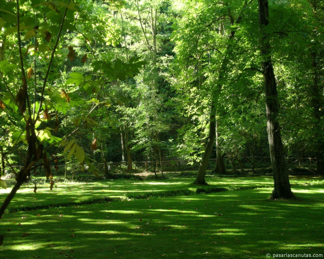 Monasterio de piedra fotos de paisajes for Paisajes de jardines